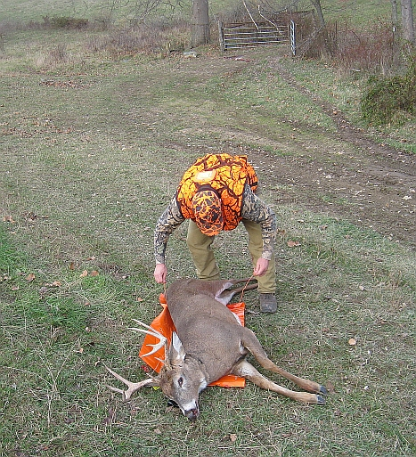 5a-game-glide-deer-sled-buck7