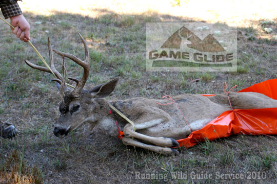 6 Game Glide-deer-drag-sled-w-blacktail-deer