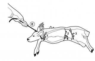 Game Glide Deer Sled Instruction Image 4