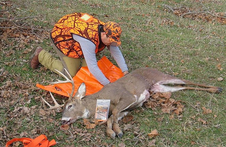 5a-game-glide-deer-sled-buck4