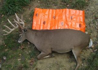 4 monster-buck-on-game-glide-deer-sled