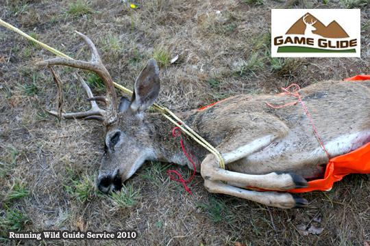 6 Game Glide-deer-sled-black-tail-deer